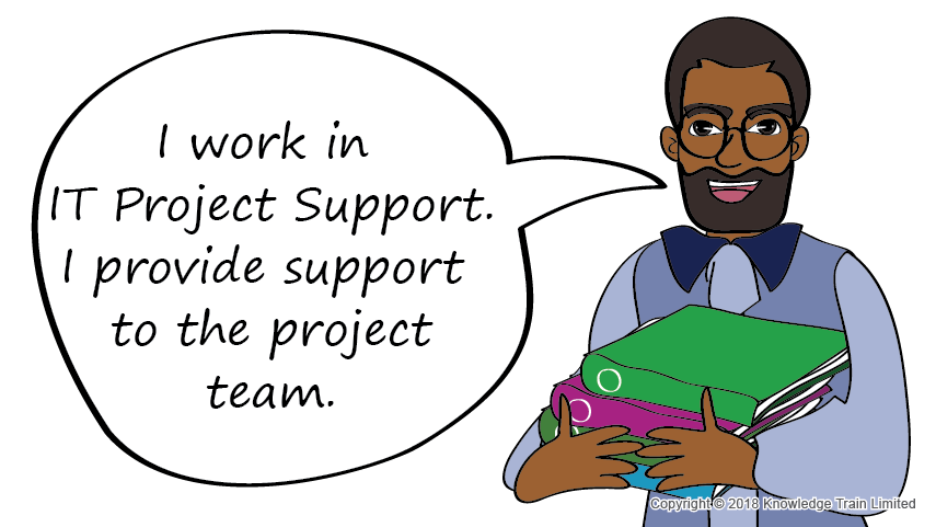 IT Project Support role