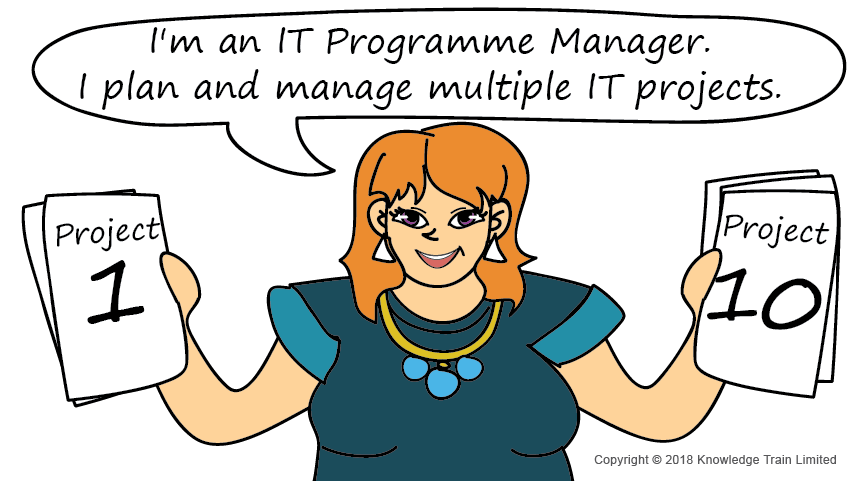 IT Programme Manager role